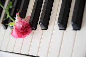 音楽の習い始めで大切なこと